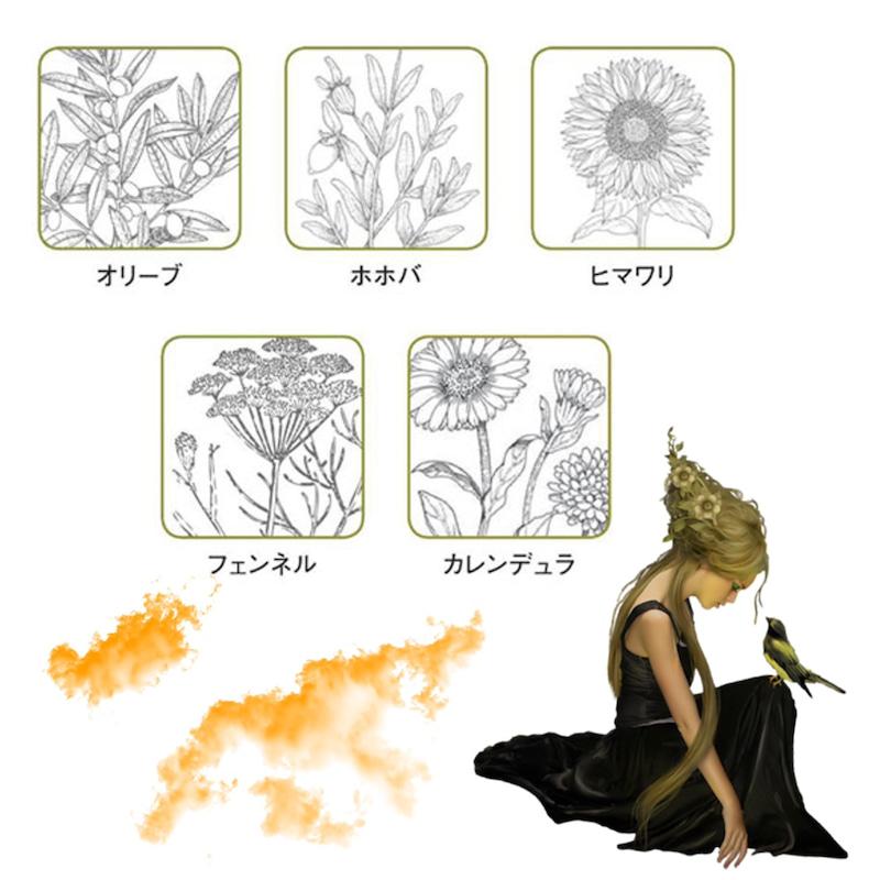 松井カラー3